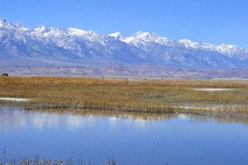 blog 3 Owens Lake, Keeler, Eastern Sierra Nevada, CA_DSC5488-4.1.16.(1).jpg