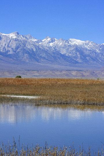 blog 3 Owens Lake, Keeler, Eastern Sierra Nevada, CA_DSC5485-4.1.16.(1).jpg
