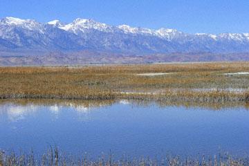 blog 3 Owens Lake, Keeler, Eastern Sierra Nevada, CA_DSC5482-4.1.16.(1).jpg