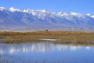blog 3 Owens Lake, Keeler, Eastern Sierra Nevada, CA_DSC5483-4.12.16.(1).jpg