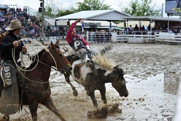 blog 24 D3S Oakdale Rodeo, Bareback Bronco 4_DSC5268-4.10.16.(2).jpg
