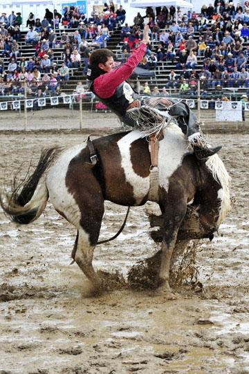 blog 24 D3S Oakdale Rodeo, Bareback Bronco 4_DSC5258-4.10.16.(2).jpg