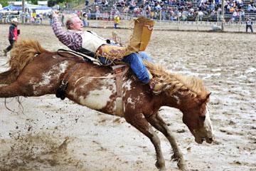 blog 24 D3S Oakdale Rodeo, Bareback Bronco 5, Tyler Nelson (81.5 Victor, ID)_DSC5293-4.10.16.(2).jpg