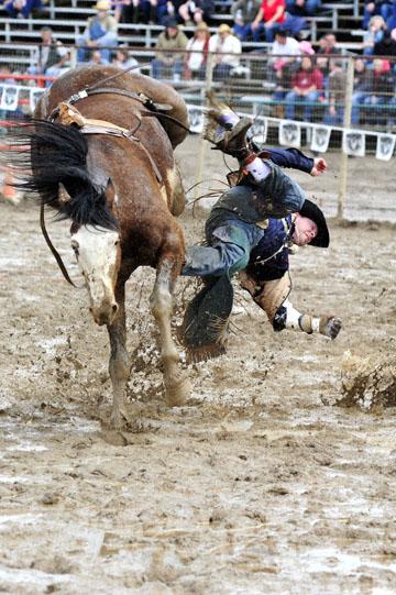 blog 24 D3S Oakdale Rodeo, Bareback Bronco 6, Kyle Bowers (69 Drayton Valley, AB) 2_DSC5330-4.10.16.(2).jpg
