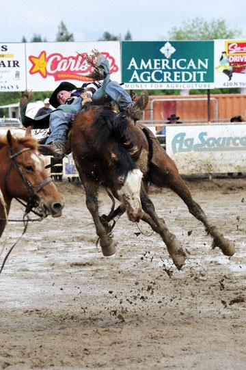 blog 24 D3S Oakdale Rodeo, Bareback Bronco 6, Kyle Bowers (69 Drayton Valley, AB) 2_DSC5318-4.10.16.(2).jpg