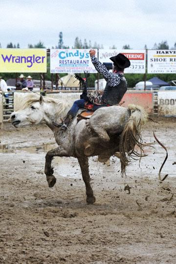 blog 24 D3S Oakdale Rodeo, Bareback Bronco 7, Tucker Zingg (84 Glendive, MT) 2_DSC5340-4.10.16.(2).jpg