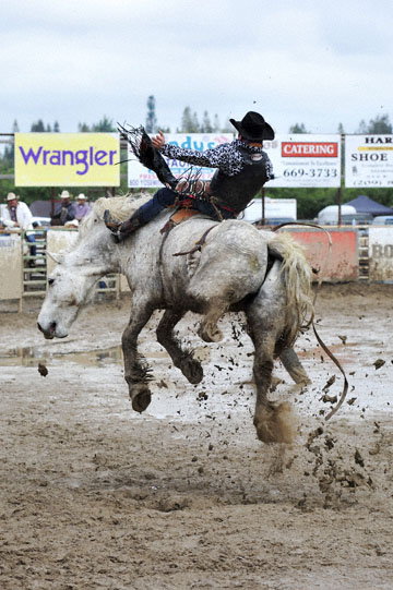 blog 24 D3S Oakdale Rodeo, Bareback Bronco 7, Tucker Zingg (84 Glendive, MT) 2_DSC5339-4.10.16.(2).jpg