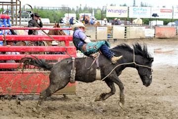 blog 24 D3S Oakdale Rodeo, Bareback Bronco 9, ? (?) 2_DSC5377-4.10.16.(2).jpg