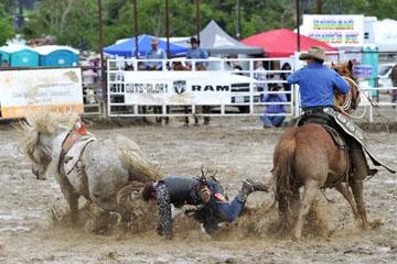 blog 24 D3S Oakdale Rodeo, Bareback Bronco 7, Tucker Zingg (84 Glendive, MT) 2_DSC5356-4.10.16.(2).jpg