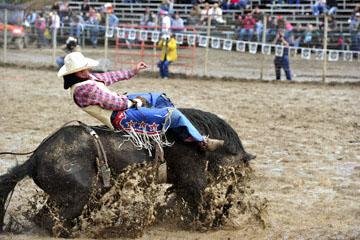 blog 24 D3S Oakdale Rodeo, Bareback Bronco 10, Tray Chambliss III (74 Fort Davis, TX)_DSC5389-4.10.16.(2).jpg