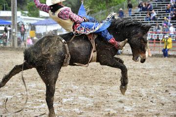 blog 24 D3S Oakdale Rodeo, Bareback Bronco 10, Tray Chambliss III (74 Fort Davis, TX)_DSC5387-4.10.16.(2).jpg