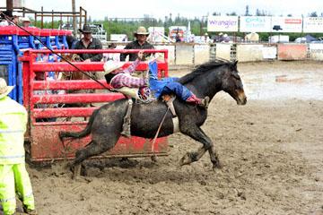 blog 24 D3S Oakdale Rodeo, Bareback Bronco 10, Tray Chambliss III (74 Fort Davis, TX)_DSC5383-4.10.16.(2).jpg