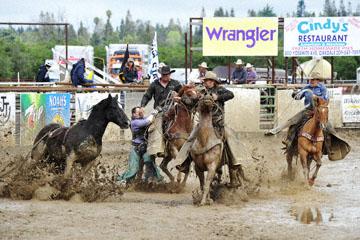 blog 24 D3S Oakdale Rodeo, Bareback Bronco 9, ? (?)_DSC5381-4.10.16.(2).jpg
