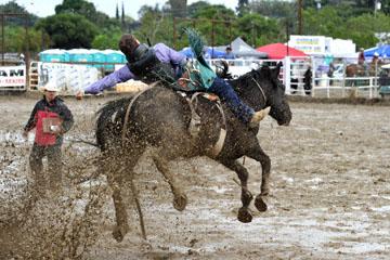 blog 24 D3S Oakdale Rodeo, Bareback Bronco 9, ? (?) 2_DSC5378-4.10.16.(2).jpg