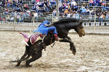 blog 24 D3S Oakdale Rodeo, Bareback Bronco 10, Tray Chambliss III (74 Fort Davis, TX)_DSC5396-4.10.16.(2).jpg