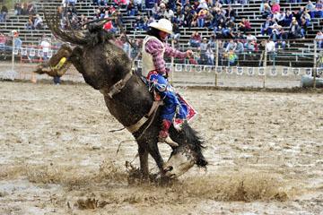 blog 24 D3S Oakdale Rodeo, Bareback Bronco 10, Tray Chambliss III (74 Fort Davis, TX)_DSC5393-4.10.16.(2).jpg