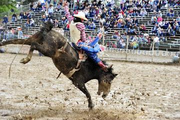 blog 24 D3S Oakdale Rodeo, Bareback Bronco 10, Tray Chambliss III (74 Fort Davis, TX)_DSC5392-4.10.16.(2).jpg