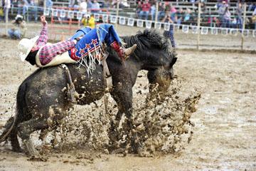 blog 24 D3S Oakdale Rodeo, Bareback Bronco 10, Tray Chambliss III (74 Fort Davis, TX)_DSC5390-4.10.16.(2).jpg