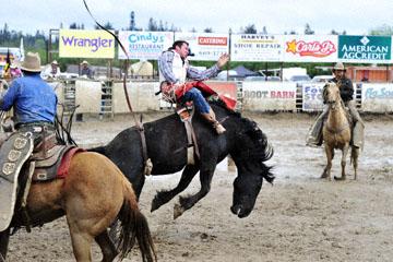 blog 24 D3S Oakdale Rodeo, Bareback Bronco 12, George R. Gillespie (73 Hamilton, MT)_DSC5423-4.10.16.(2).jpg