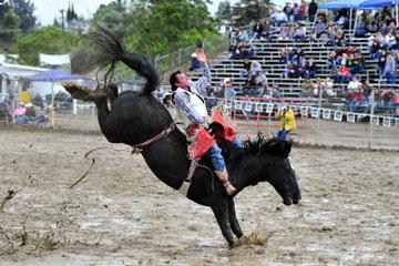 blog 24 D3S Oakdale Rodeo, Bareback Bronco 12, George R. Gillespie (73 Hamilton, MT)_DSC5434-4.10.16.(2).jpg