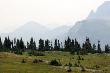 blog TAKE 92 Montana, Glacier NP 26783-8.2.08.jpg