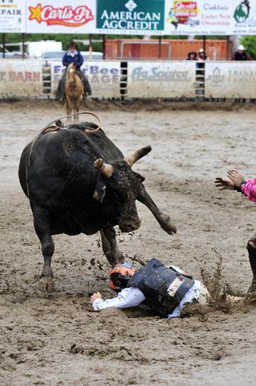 blog 24 D3S Oakdale Rodeo, Bull Riding 2-7, Aaron Russell Willia (? San Luis Obispo, CA) 2_DSC5966-4.10.16.(2).jpg