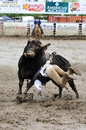 blog 24 D3S Oakdale Rodeo, Bull Riding 2-7, Aaron Russell Willia (? San Luis Obispo, CA) 2_DSC5965-4.10.16.(2).jpg