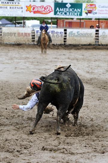 blog 24 D3S Oakdale Rodeo, Bull Riding 2-7, Aaron Russell Willia (? San Luis Obispo, CA) 2_DSC5962-4.10.16.(2).jpg