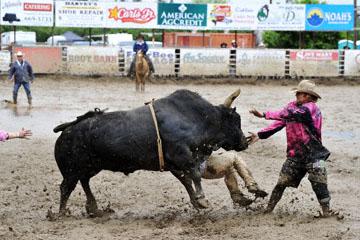 blog 24 D3S Oakdale Rodeo, Bull Riding 2-7, Aaron Russell Willia (? San Luis Obispo, CA) 2_DSC5960-4.10.16.(2).jpg