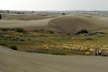 blog TAKE 95 Yellowstone NP, St. Anthony's Dune, ID 2_27119-8.5.07.jpg