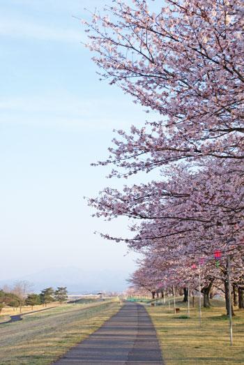 2016-04-06katsuyama001.jpg