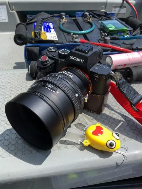 α7RⅡ+ CONTAX N Planar T* 50mm F1.4