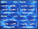 ブラジル・世界短水路選手権(1995)
