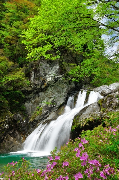 1アメガエリの滝16.04.23