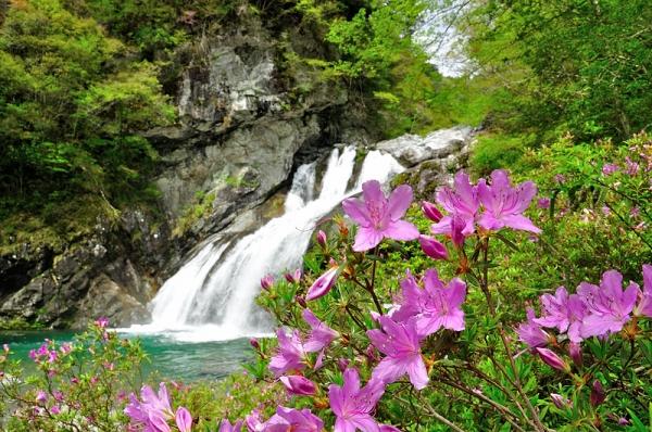 4アメガエリの滝16.04.23