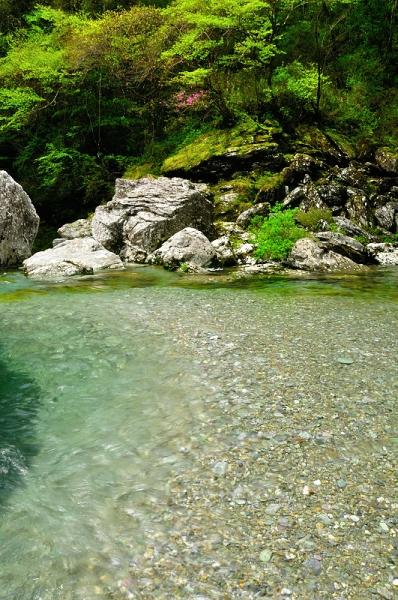 6アメガエリの滝16.04.23