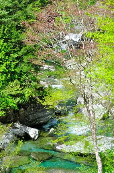 7瀬戸川渓谷16.04.23