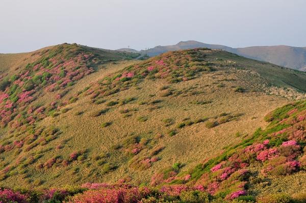 1笠取山16.05.22