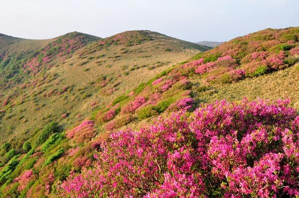 3笠取山16.05.22