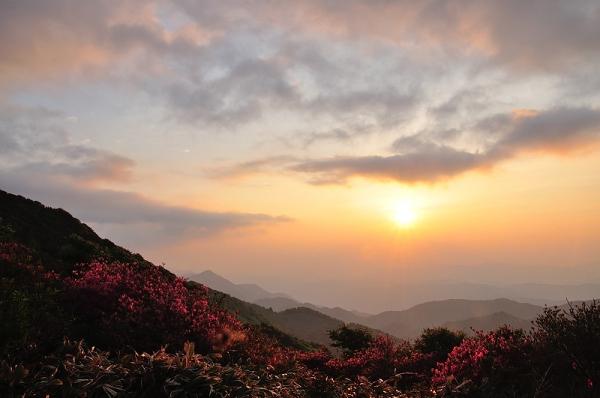 4笠取山16.05.22