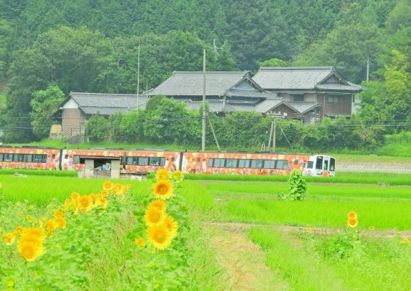 12まんのう帆山16.07.14