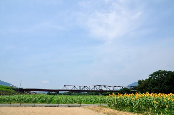 2赤橋16.08.02
