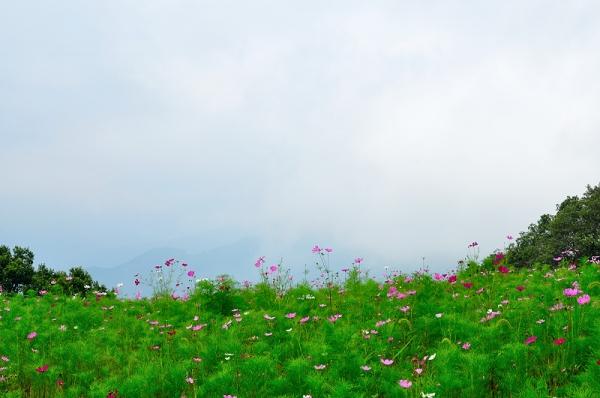 3翠波高原16.08.18