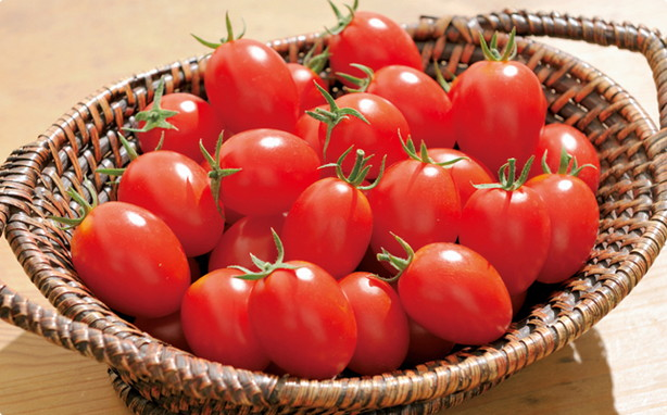 tomato_syukaku_pic_topimg_01[1]