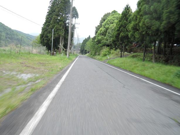 DSCN3633.jpg