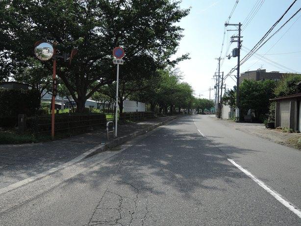 DSCN3948.jpg