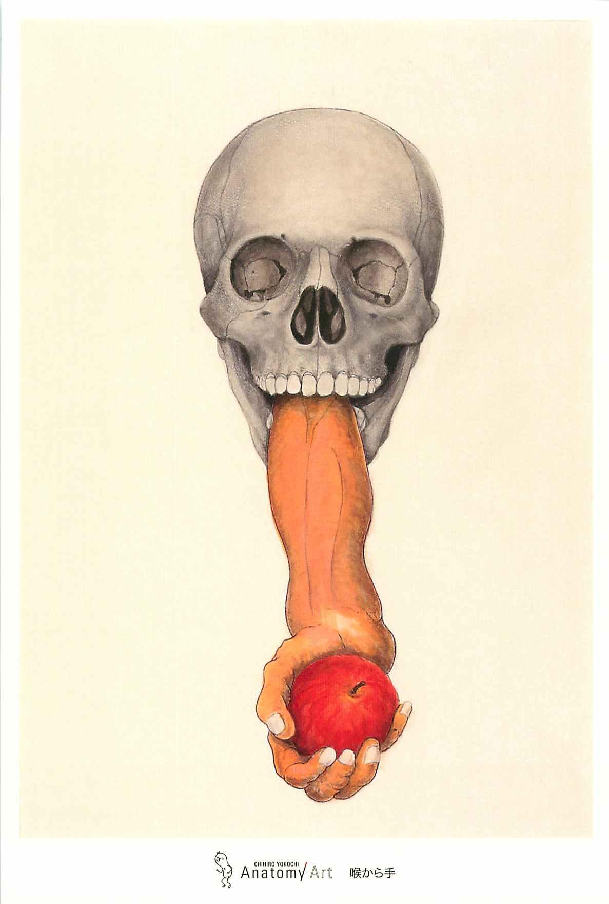 AnatomyArt9