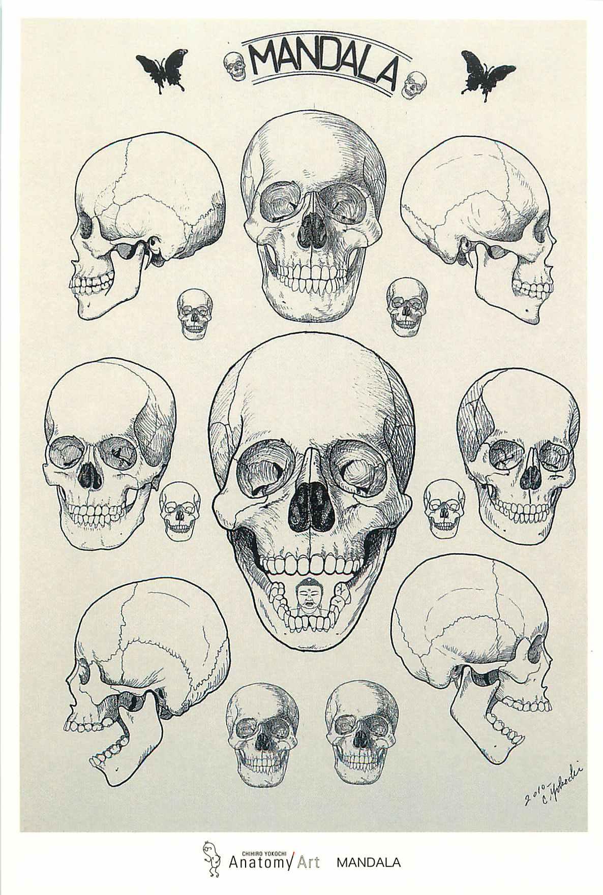 AnatomyArt11