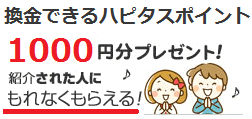 ハピタス紹介-1000円プレゼント