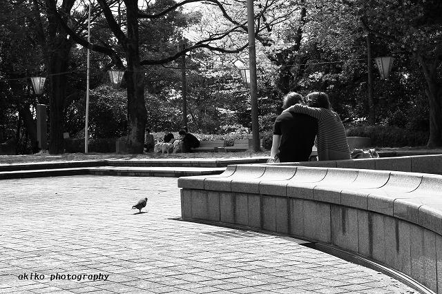 akiko_photography_little110.jpg